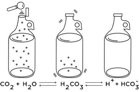 Electrolyte Balance Powder