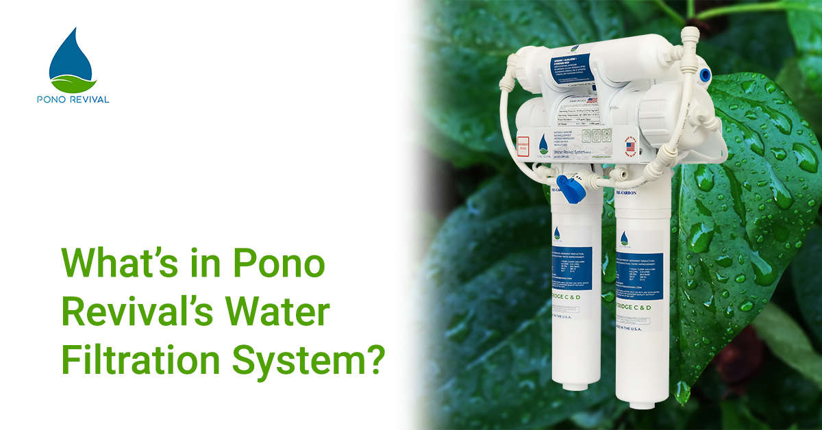 Whats-In-Pono-Revival-Water-Revival-System